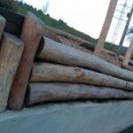 vorgartenbegrenzung-mit-rundholz